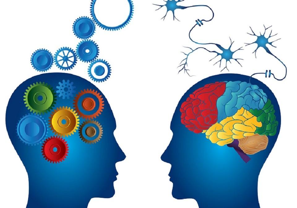 Percepciones, Sensaciones y Competencia Digital